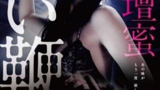 《甜蜜皮鞭》2013日本限制级悬疑.加长无删减導演版.BD720P.日语中字